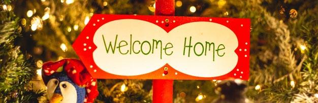 Bienvenido Navidad